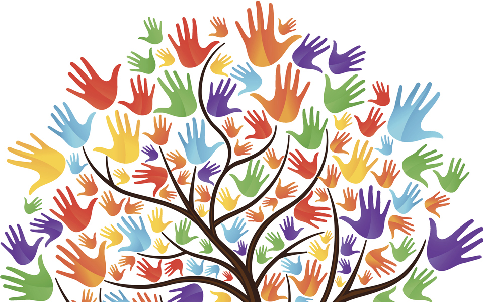 Diversity tree graphic